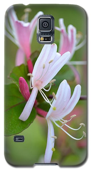 Galaxy S5 Case featuring the photograph Honeysuckle by JD Grimes