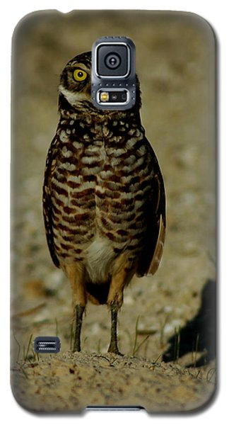 Hoo Are You? Galaxy S5 Case