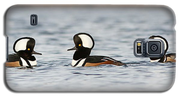 Hooded Mergansers Galaxy S5 Case by Mircea Costina Photography