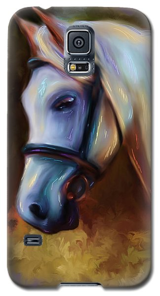 Horse Of Colour Galaxy S5 Case