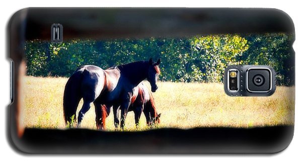 Galaxy S5 Case featuring the photograph Horse Photography by Peggy Franz