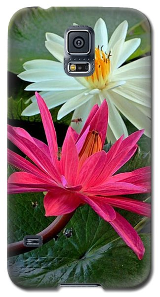 Galaxy S5 Case featuring the photograph Hot Pink And White Water Lillies by Larry Nieland