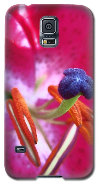 Galaxy S5 Case featuring the photograph Hot Pink Lilly Up Close by Kym Backland