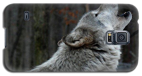 Howling Tundra Wolf Galaxy S5 Case
