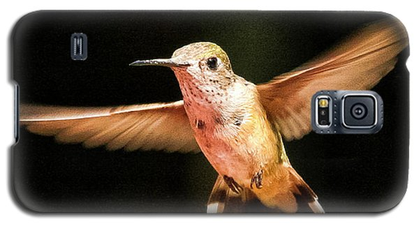 Galaxy S5 Case featuring the photograph Hummingbird  by Albert Seger