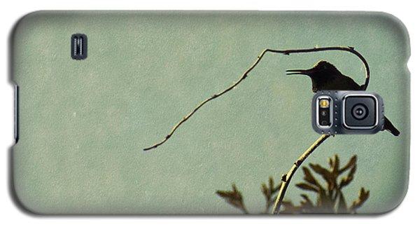 Hummingbird On Winter Wisteria Galaxy S5 Case
