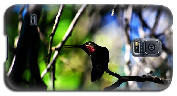 Galaxy S5 Case featuring the photograph Hummingbird Resting On A Twig by Susanne Still