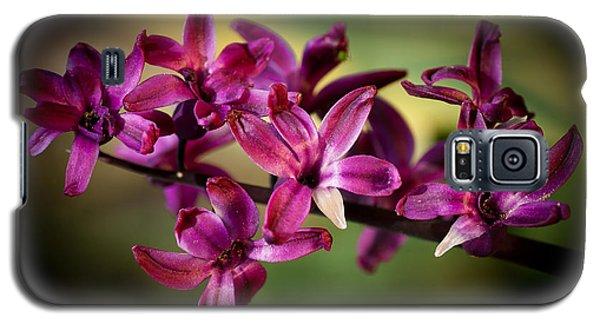Hyacinth Galaxy S5 Case