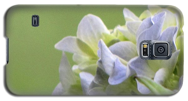 Galaxy S5 Case featuring the photograph Hydrangea Blossom by Katie Wing Vigil