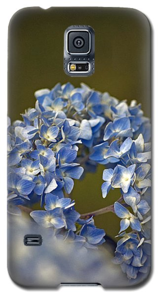 Galaxy S5 Case featuring the photograph Hydrangea by Elsa Marie Santoro