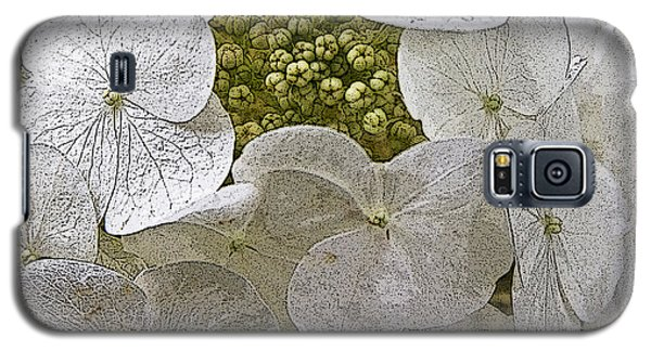 Galaxy S5 Case featuring the photograph Hydrangea by Michael Friedman