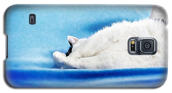 Galaxy S5 Case featuring the photograph I Have A Question by JM Photography