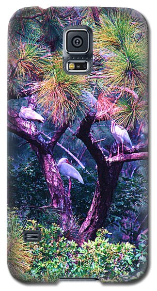 Ibis-gone To Roost Galaxy S5 Case by Joy Braverman