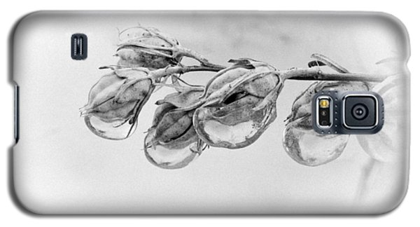 Ice Covered Branch Galaxy S5 Case