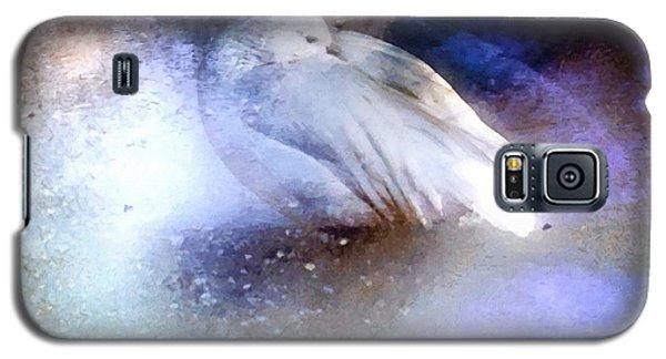 Icebound Galaxy S5 Case