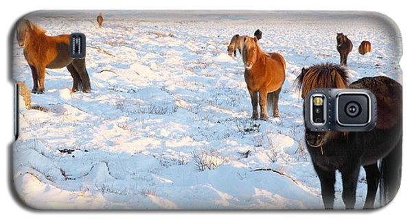 Galaxy S5 Case featuring the photograph Iceland by Milena Boeva