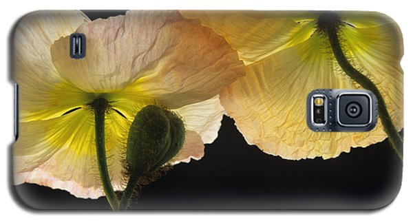 Iceland Poppies 2 Galaxy S5 Case by Susan Rovira