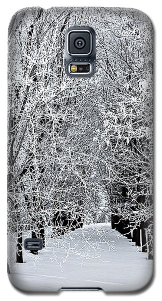 Icy Gateway Galaxy S5 Case