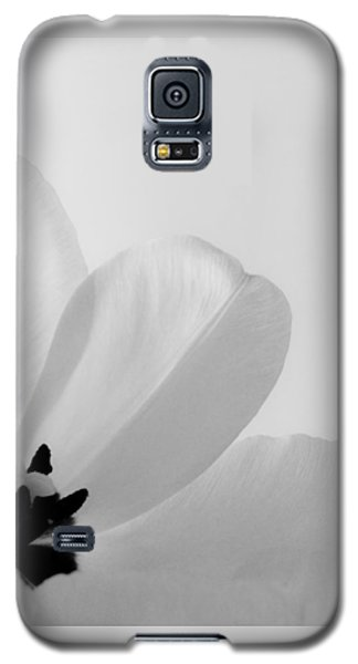 Galaxy S5 Case featuring the photograph Idem by Julia Wilcox