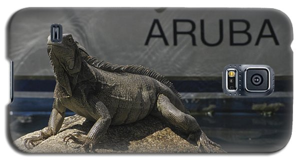 Galaxy S5 Case featuring the photograph Iguana by David Gleeson