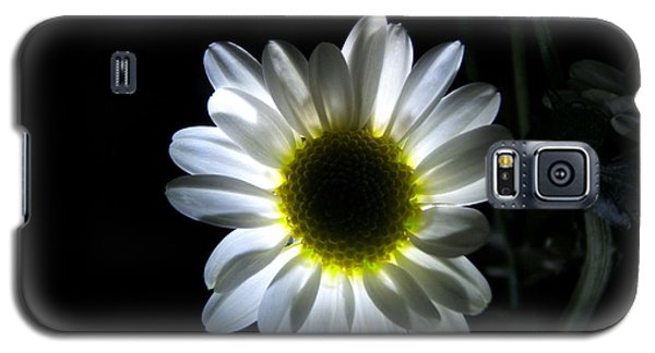 Illuminated Daisy Photograph Galaxy S5 Case
