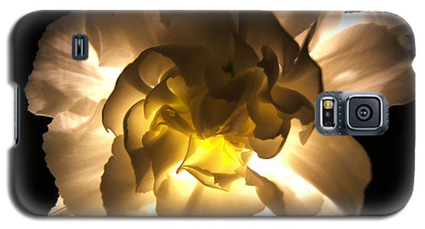 Illuminated White Carnation Photograph Galaxy S5 Case