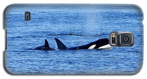 In The Great Wide Ocean Galaxy S5 Case