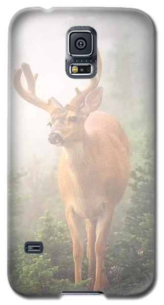 In The Mist Galaxy S5 Case