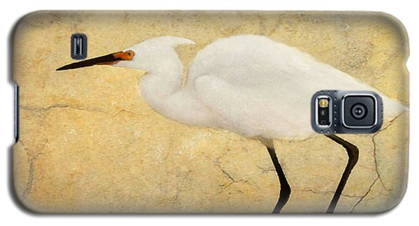 Incidental Dance Galaxy S5 Case