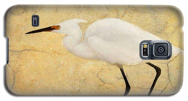 Incidental Dance Galaxy S5 Case
