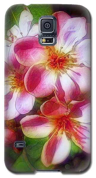 India Hawthorne Galaxy S5 Case