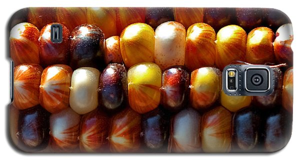 Galaxy S5 Case featuring the photograph Indian Corn by Barbara McMahon
