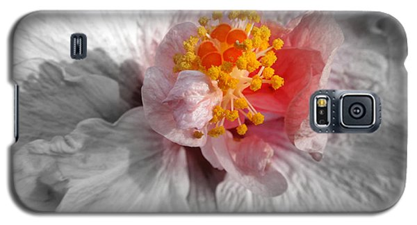 Inner Glow Galaxy S5 Case by Renee Trenholm