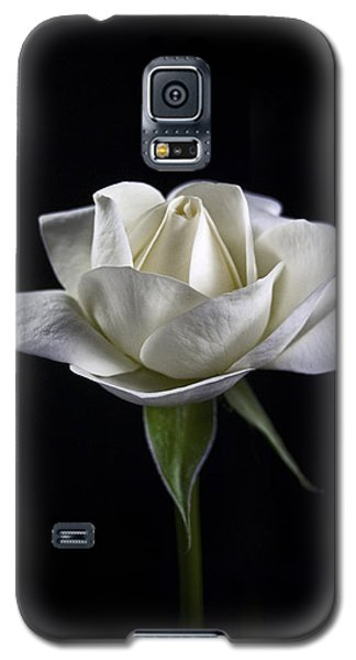 Galaxy S5 Case featuring the photograph Innocence by Elsa Marie Santoro