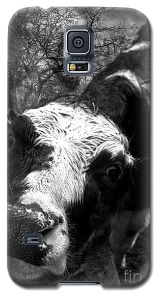 Inquisitive Zoey With Ellamay Galaxy S5 Case