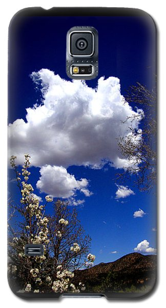Galaxy S5 Case featuring the photograph Inside The Mind Of Spring by Susanne Still