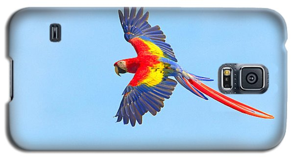 Into The Blue Galaxy S5 Case by Tony Beck