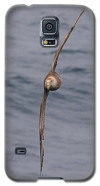 Into The Wind Galaxy S5 Case