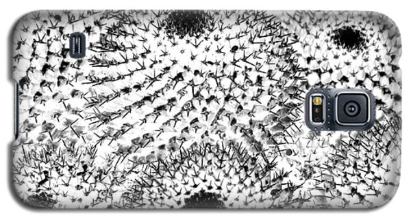 Galaxy S5 Case featuring the photograph Invisible Cactus by Rebecca Margraf