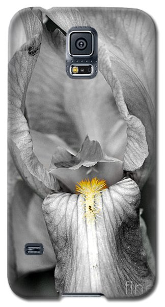 Iris - Bw Galaxy S5 Case by Larry Carr