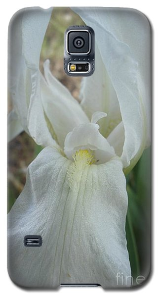 Galaxy S5 Case featuring the photograph Iris Angel by Kerri Mortenson