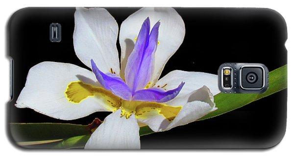 Galaxy S5 Case featuring the photograph Iris by Bonnie Muir