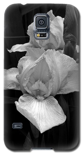 Galaxy S5 Case featuring the photograph Iris by David Pantuso