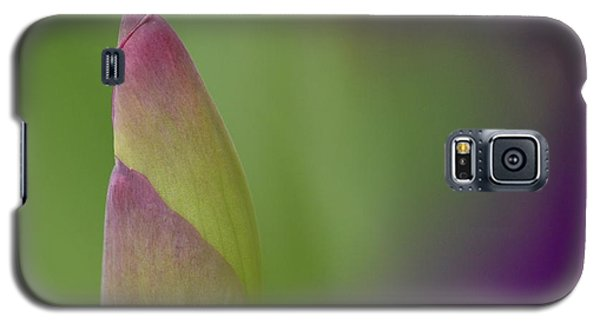 Iris-istible 1 Galaxy S5 Case