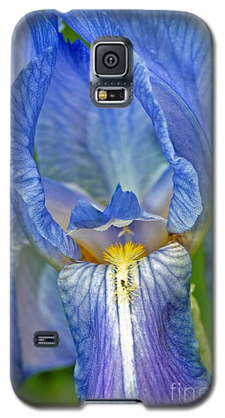 Iris Galaxy S5 Case by Larry Carr