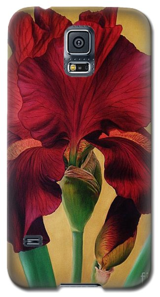 Galaxy S5 Case featuring the painting Iris by Paula L