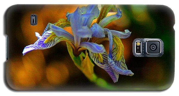 Galaxy S5 Case featuring the photograph Iris by Tam Ryan