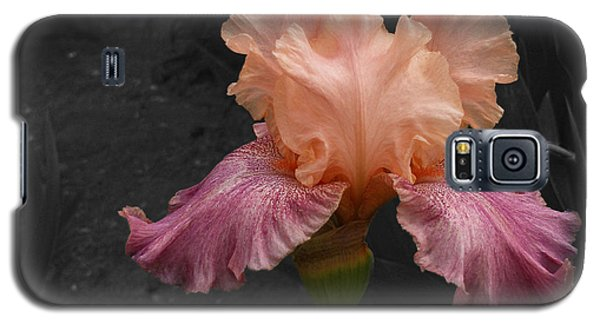 Galaxy S5 Case featuring the photograph Iris2 by David Pantuso