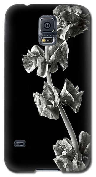 Irish Bells In Black And White Galaxy S5 Case