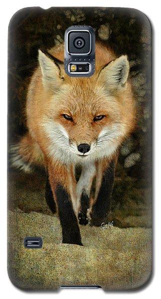 Galaxy S5 Case featuring the photograph Island Beach Fox by Sami Martin